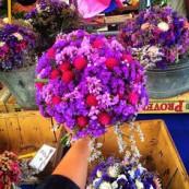 flores de beaune | I