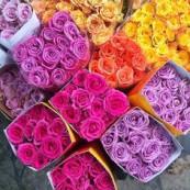 Mercado das flores |
