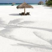 White Sands, Moofush