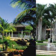 Dicas de Miami Parte 4 – Compras!