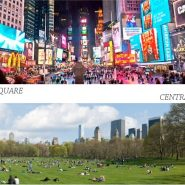7 coisas que faço quando vou pra Nova York