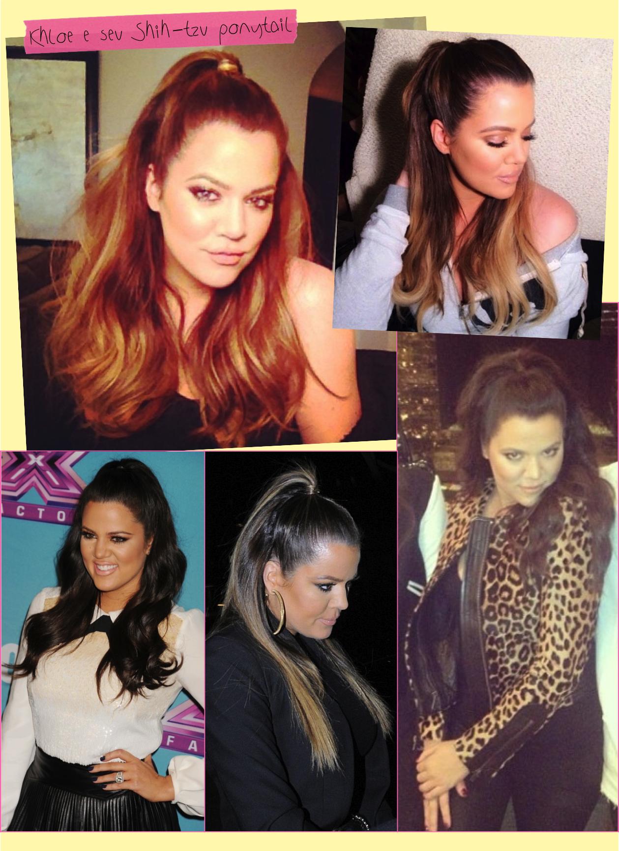 khloe-kardashian-shih-tzu-ponytail