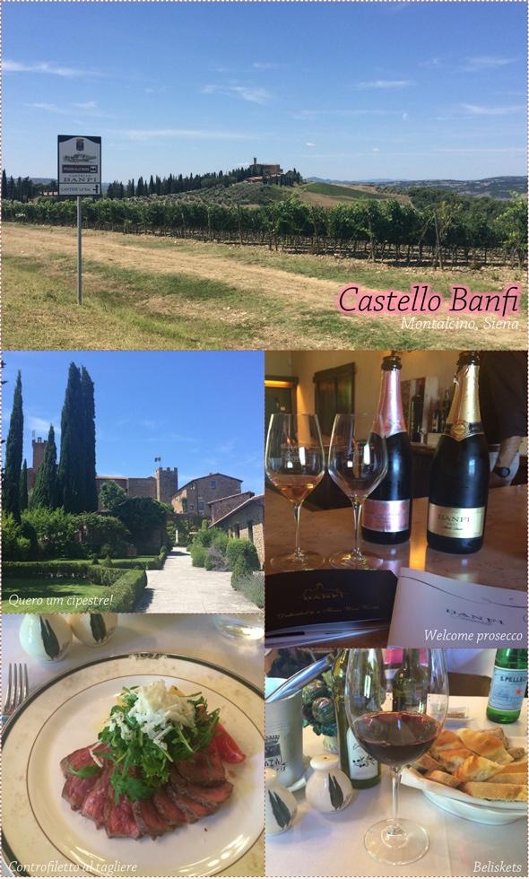 vinicola-castello-banfi-toscana