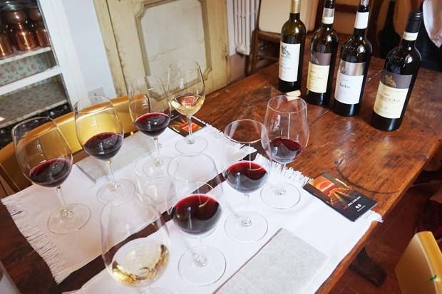 degustacao-vinicola-castello-di-ama