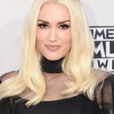 AMERICAN MUSIC AWARDS 2015: GWEN STEFANI