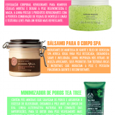 FAVORITOS THE BODY SHOP PRO NATAL E O ANO TODO!