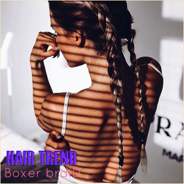 BOXER BRAID 2