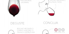 Qual é o seu estilo de vinho?
