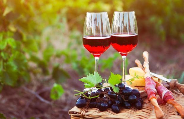 vinho uva tanino
